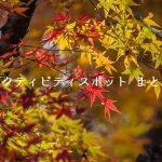 【長瀞のお店・スポットはどこ?】ヒルナンデス!「久本雅美 紅葉 長瀞」2017/11/24放送
